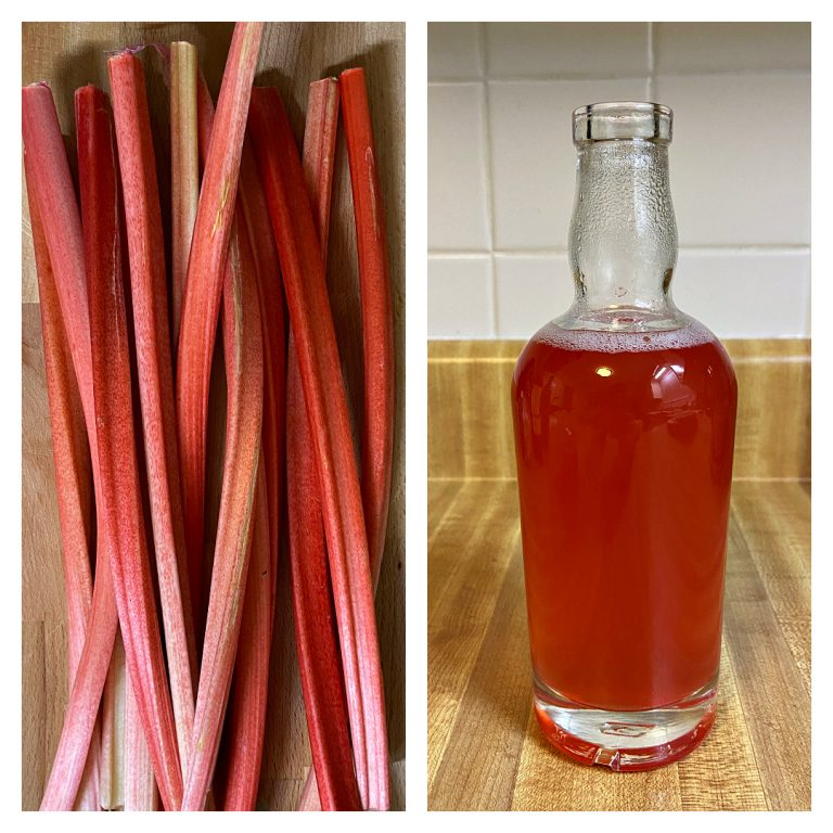 pink rhubarb stalks and syrup