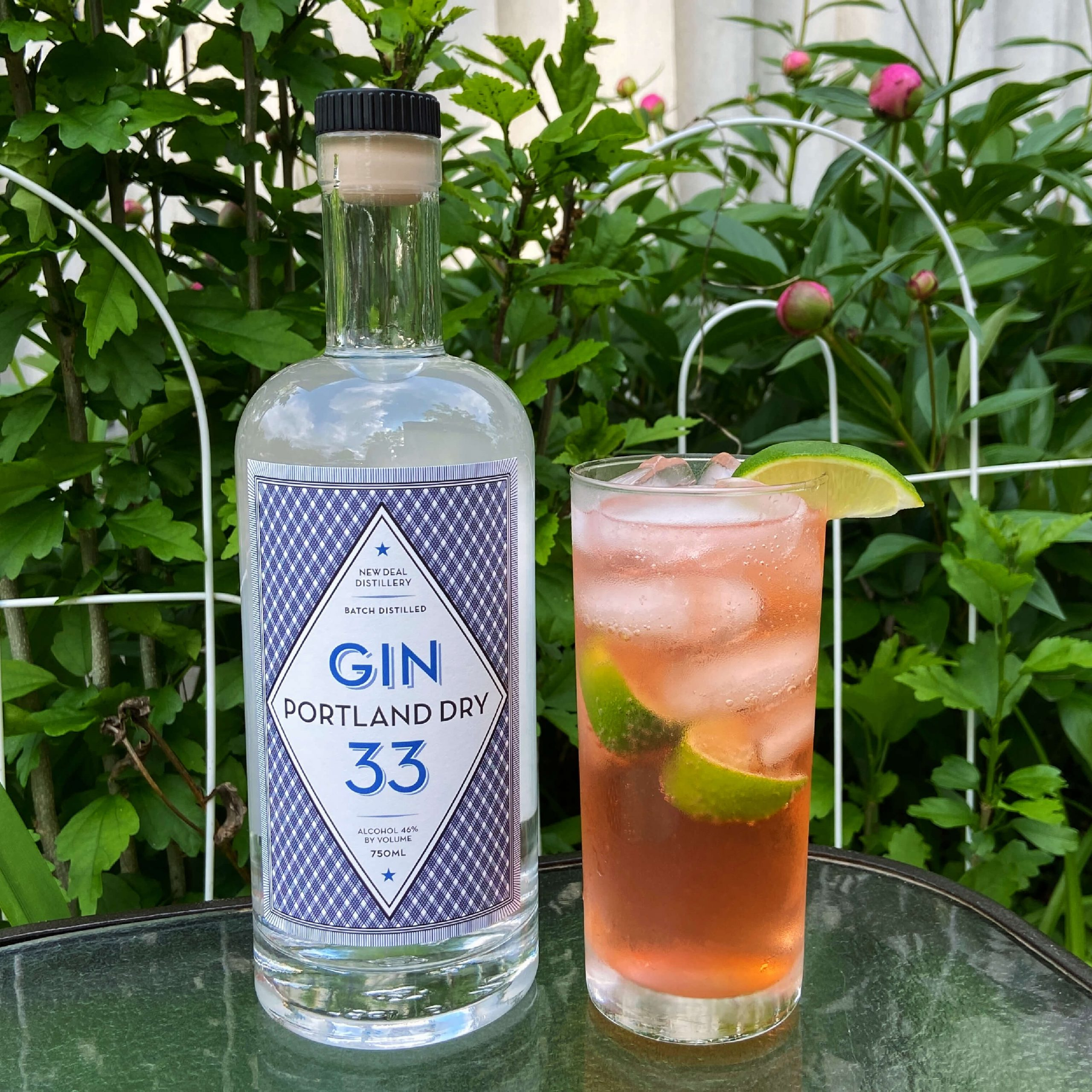 strawberry gin and tonic